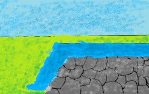 landscape lilys